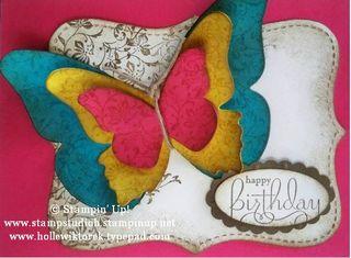 ButterflyInColorCard